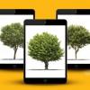 Vakıfbank'tan Ekstrelerini E-posta Olarak Alanlara iPad Mini Kazanma Şansı
