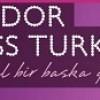 Elidor Miss Turkey 2015 Başvuru Zamanı ve Koşulları