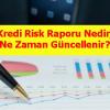 Kredi Risk Raporu Nedir, Ne Zaman Güncellenir
