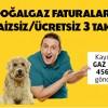 Axess'ten Doğalgaz Faturalarına 3 Taksit Kampanyası