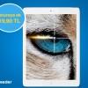 Turkcell Superonline Reeder Tablet Kampanyası